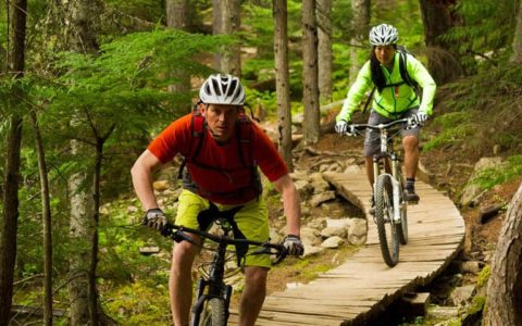 Two cyclists on a wooded path.