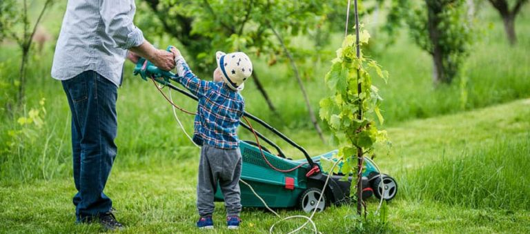 A child gardening with their grandfather