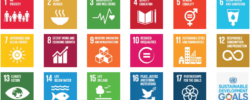 The UN's 17 SDGs (Sustainable Development Goals) are a universally agreed sustainability framework, which can also support conversations with your adviser about your values and focus your decision-making.